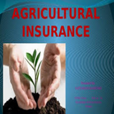 Agriculture Insaurance
