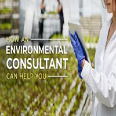 Environment Consultants