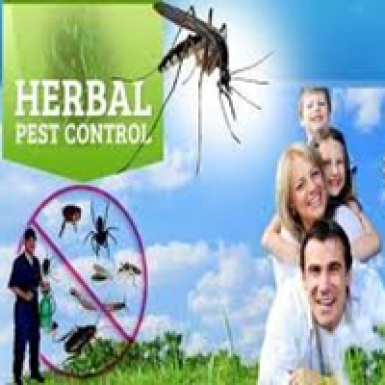 Harbal Pest Control Services