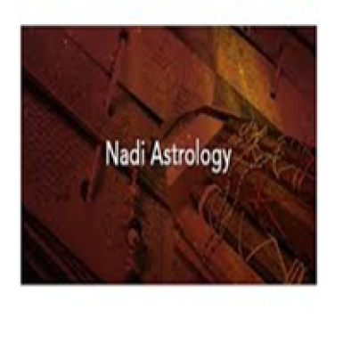 Nadi Astrologers